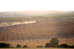 Combine Harvester harvesting wheat in England Stock Images