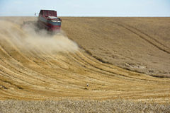 Combine harvester harvesting wheat field Royalty Free Stock Photography