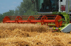Combine harvester. Harvesting of wheat. Reaper reaps  crops at harvest, when they are ripe. Stock Photography