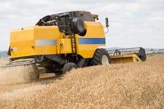 Combine harvester. Combine harvesting wheat, rear view Stock Photos
