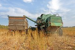 Combine harvester load sunflower seed in the truck. At the time of harvest in autumn Royalty Free Stock Images
