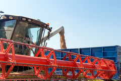 Combine harvester load wheat in the truck Royalty Free Stock Photography