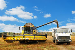 Combine harvester loading a truck in the field Royalty Free Stock Photography