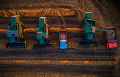 Combine harvester machine working in a wheat field at sunset royalty free stock images