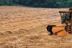 Combine harvester on a mowed cornfield Stock Photo