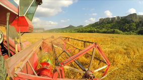 Combine Harvester Mowing Crop In Wheat Field stock footage