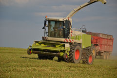 Combine harvester mows the field, harvester unloading into a tractor trailer. Slovakia Royalty Free Stock Photography