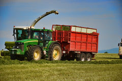 Combine harvester mows the field, harvester unloading into a tractor trailer Royalty Free Stock Photo