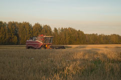 Combine harvester mows the grass in autumn Royalty Free Stock Photos