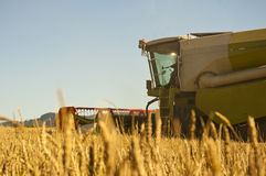 Combine harvester Stock Photography