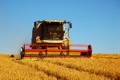 Combine harvester Royalty Free Stock Images