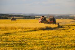 Combine harvester. old combine harvester working on the wheat field Kombain collects on the wheat crop. Agricultural machinery in stock images