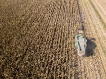 Combine harvester picking seed from fields, aerial view of a field with a combine harvester with cornhusker gathering the crop. Agriculture and cultivation Stock Photography