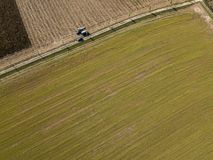 Combine harvester picking seed from fields, aerial view of a field with a combine harvester with cornhusker gathering the crop Royalty Free Stock Photos