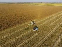 Combine harvester pours corn grain into the truck body. Harvester harvests corn. Stock Photos