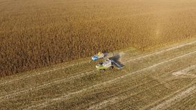 Combine harvester pours corn grain into the truck body. Harvester harvests corn. Royalty Free Stock Photos
