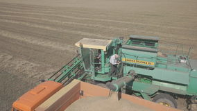 A combine harvester pours wheat into truck on field. Wheeled, self-propelled, single drum harvester is intended for harvesting spiked grains unloads harvest stock footage