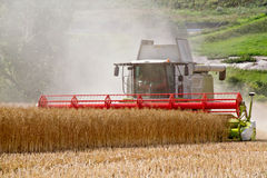 Combine harvester at rape harvest Royalty Free Stock Photography
