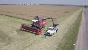 Combine harvester rapeseed into the truck body / rape harvester harvesting by the combine harvester, ripe rape, sun, clouds, stock video