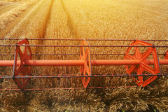 Combine harvester revolving reel from farmers pov Stock Photo