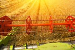 Combine harvester revolving reel harvesting wheat crops Stock Photo