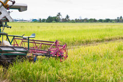 Combine harvester on a rice field Stock Images