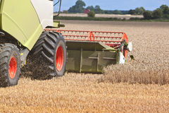 A combine harvester splitting the wheat. Farmers working hard in the field splitting the wheat stock photo