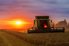 Combine harvester at sunset Stock Photo