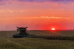 Combine harvester at sunset Stock Image