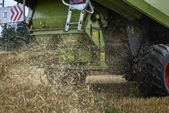 Combine harvester throwing corn wastes. Close up stock photo