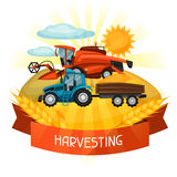 Combine harvester and tractor on wheat field. Agricultural illustration farm rural landscape.  Stock Photography