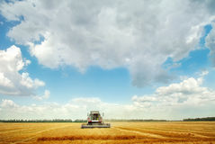 Combine harvester under blue sky Royalty Free Stock Image