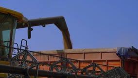 Combine-harvester unload grain stock footage