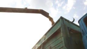 Combine harvester unloading architecture grain into a wagon. Combine harvester grain Royalty Free Stock Image