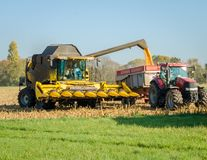 Combine harvester unloading corn seeds Stock Photo