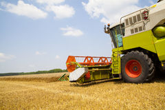 Combine harvester on a wheat field. Combine harvester on a wheat field with a cloudy sky Stock Image