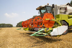 Combine harvester. On a wheat field Royalty Free Stock Photos
