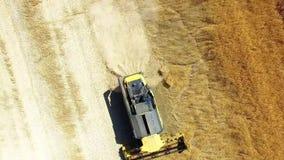 Combine harvester on wheat field. stock video footage