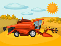 Combine harvester on wheat field. Agricultural illustration farm rural landscape.  Stock Photo