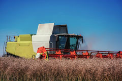 Combine Harvester on a Wheat Field. Agriculture Royalty Free Stock Photos