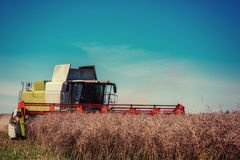 Combine Harvester on a Wheat Field Stock Photos