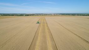Combine harvester on wheat field stock footage