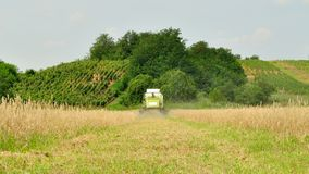 Combine harvester in the wheat field during harves Stock Photography