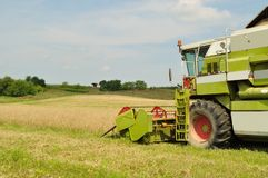 Combine harvester in the wheat field during harves Stock Photos