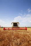 Combine harvester in a wheat field Royalty Free Stock Image