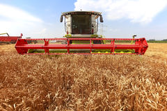 Combine harvester in a wheat field Royalty Free Stock Photos