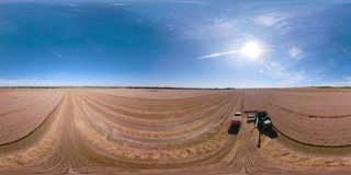 Combine harvester on wheat field VR360 stock footage