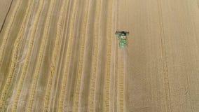 Combine harvester on wheat field stock video