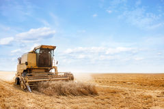 Combine harvester on a wheat field Stock Photography