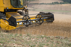 Combine harvester. Wheat harvest. Reel of combine harvester Royalty Free Stock Photography
